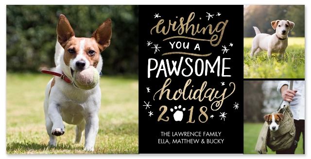 set of 20 flat photo cards - Pet Holiday Cards