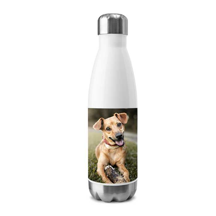 Stainless Insulated Water Bottle