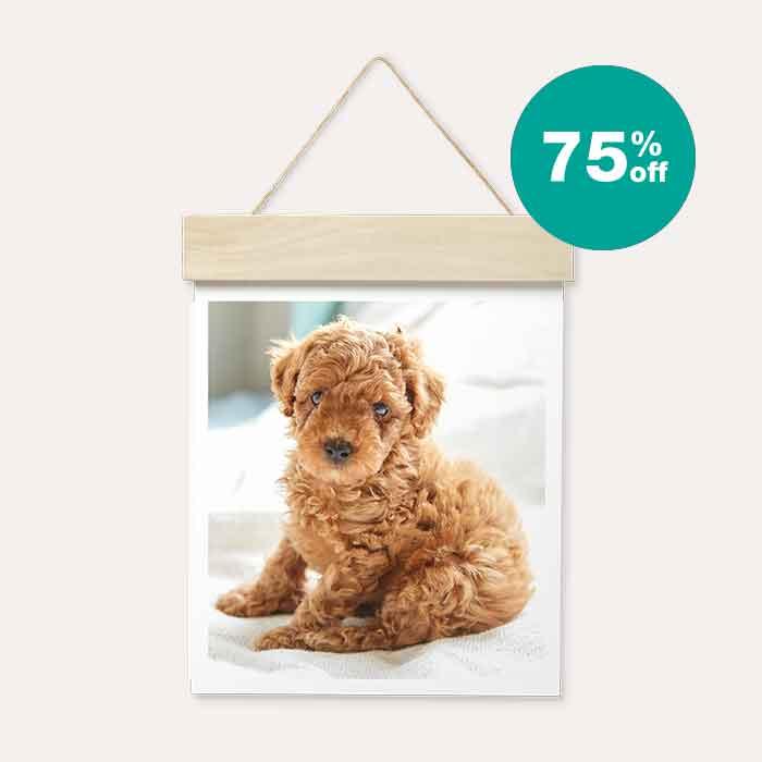 75% off Wood Hanger Board Prints