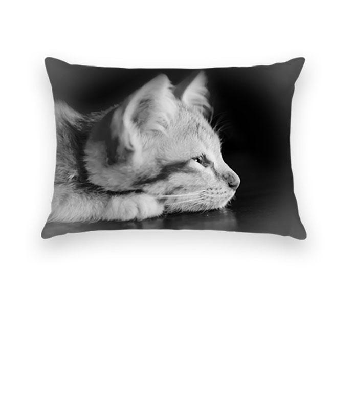 Walgreens Decorative Pillow Sham : Home Decor - Pillows & Blankets Walgreens PhotoPillows & Blankets Walgreens Photo