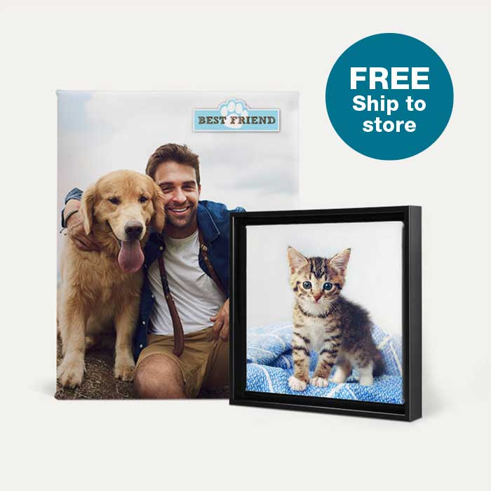 FREE Ship to Store. Canvas Prints