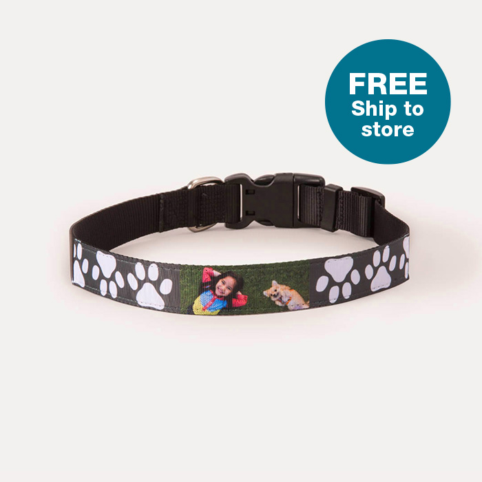 FREE Ship to Store. Pet Collars