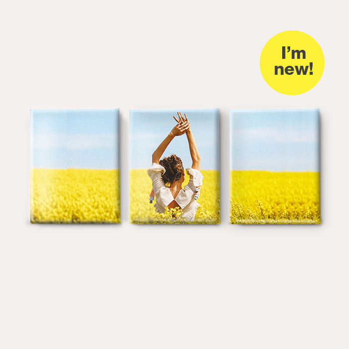 I'm new! Split Canvas Prints
