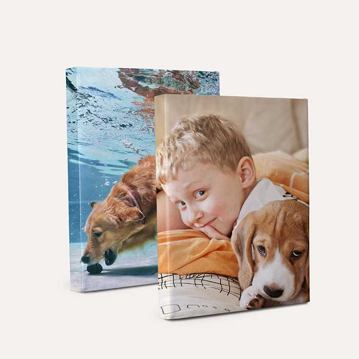 Canvas Prints image
