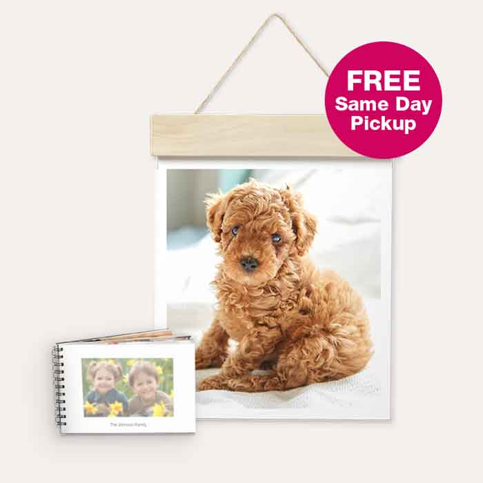 FREE Same Day Pickup. 40% off Photo Cards & Gifts