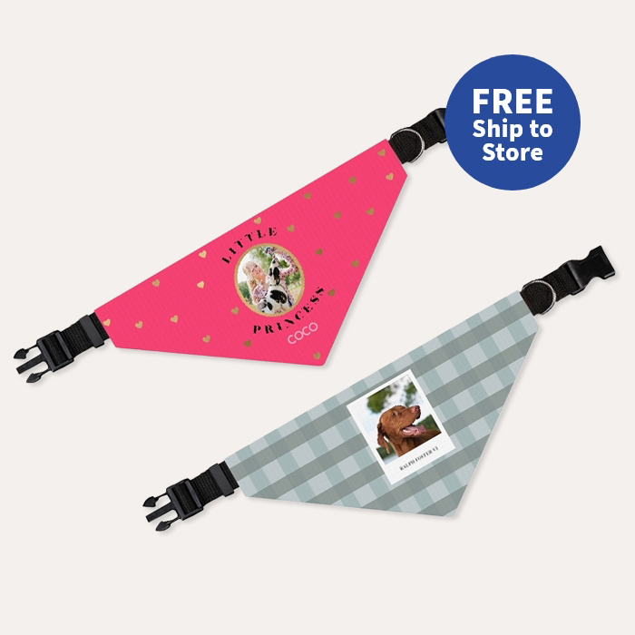 FREE Same Day Pickup. 50% off Pet Bandanas.